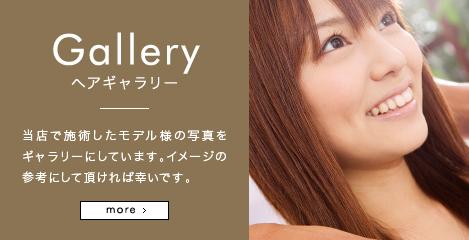 Gallery ヘアギャラリー