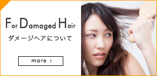 For Damaged Hair ダメージヘアについて